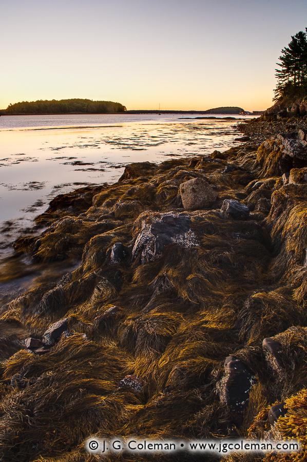 &#8220Dawn on Frenchman Bay&#8221, Frenchman Bay & Bar Island, Mount Desert Island, Maine
