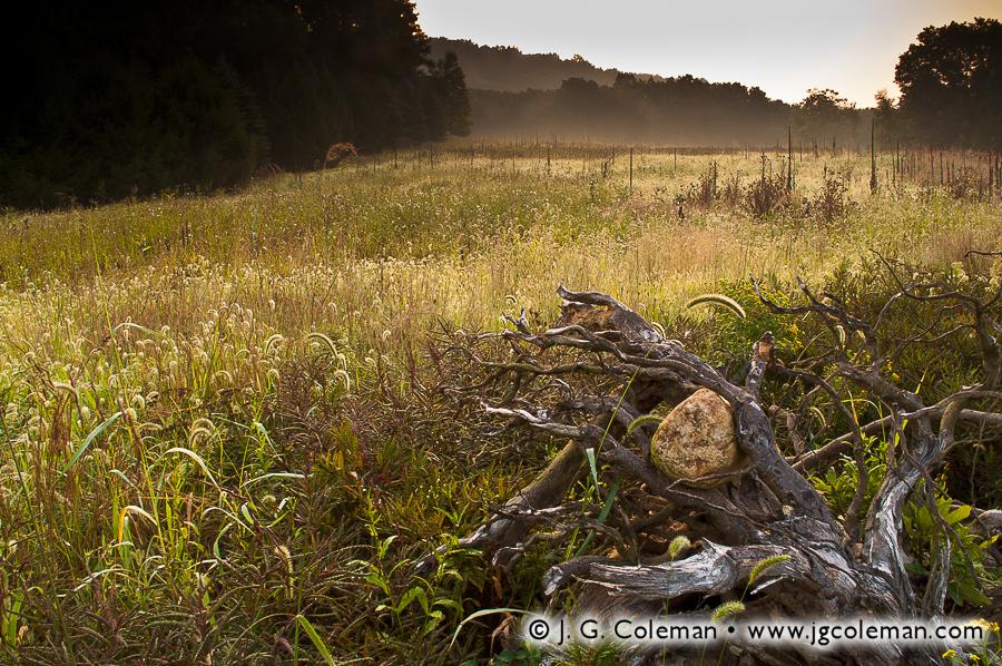 &#8220Misty Meadow&#8221, Machimoodus State Park, East Haddam, Connecticut