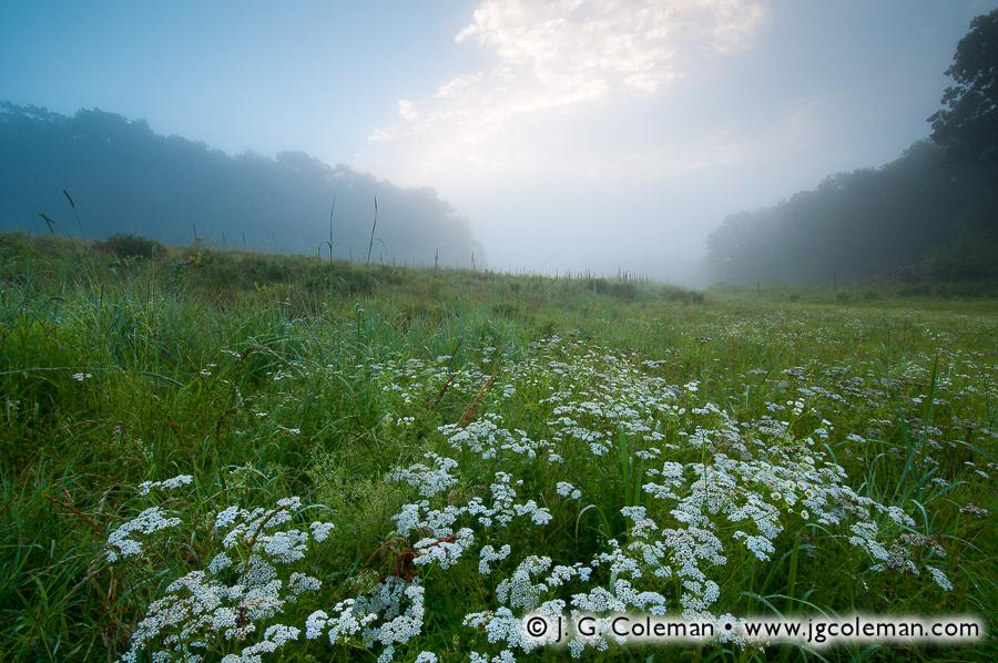 &#8220Machimoodus Dreamscape&#8221, Machimoodus State Park, East Haddam, Connecticut