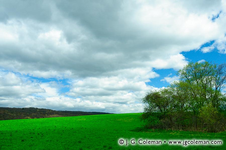 &#8220Idyllic Meadows&#8221, Macricostas Preserve, Washington, Connecticut