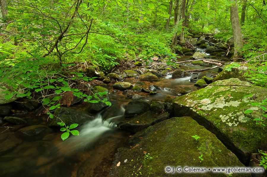 &#8220Lindsley Woods&#8221, Lindsley Brook near Scovill Reservoir, Wolcott, Connecticut
