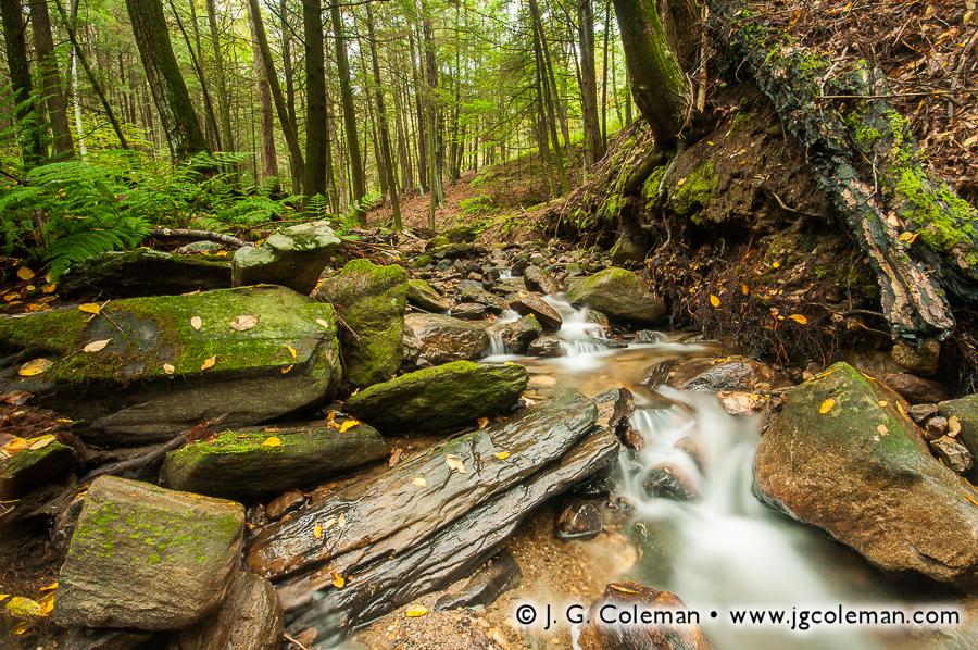 &#8220Quiet Morning on Kirby Brook&#8221, Steep Rock Preserve, Washington, Connecticut