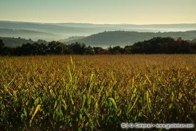 Yankee Farmlands № 86