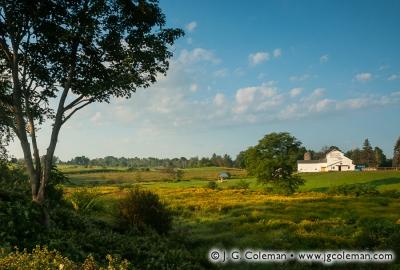 Yankee Farmlands № 3