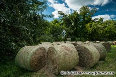 Yankee Farmlands № 5