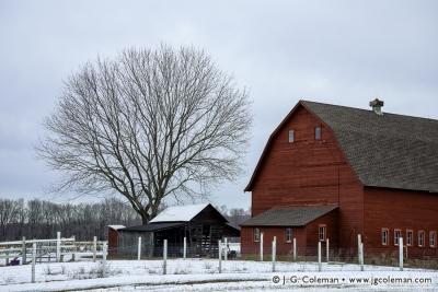 Yankee Farmlands № 25
