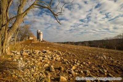 Yankee Farmlands № 51