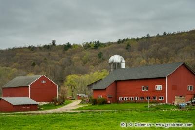 Yankee Farmlands № 64