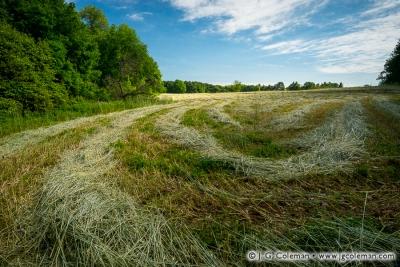Yankee Farmlands № 69