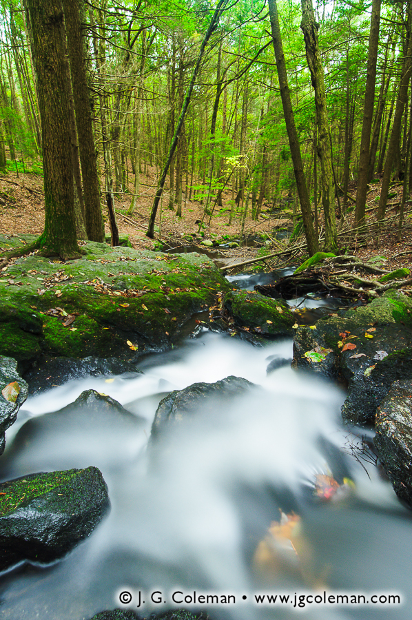 &#8220Ayer's Gap, Cascades and Forest&#8221, Bailey Brook, Ayer's Gap Preserve (Bailey's Ravine), Franklin, Connecticut