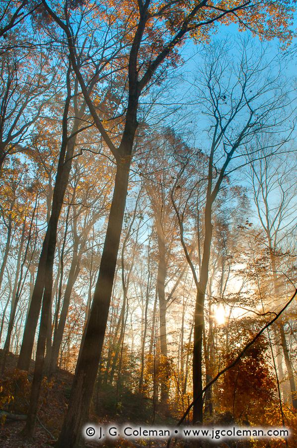 Autumn Dawn at Blackledge (Blackledge Falls Park, Glastonbury, Connecticut)