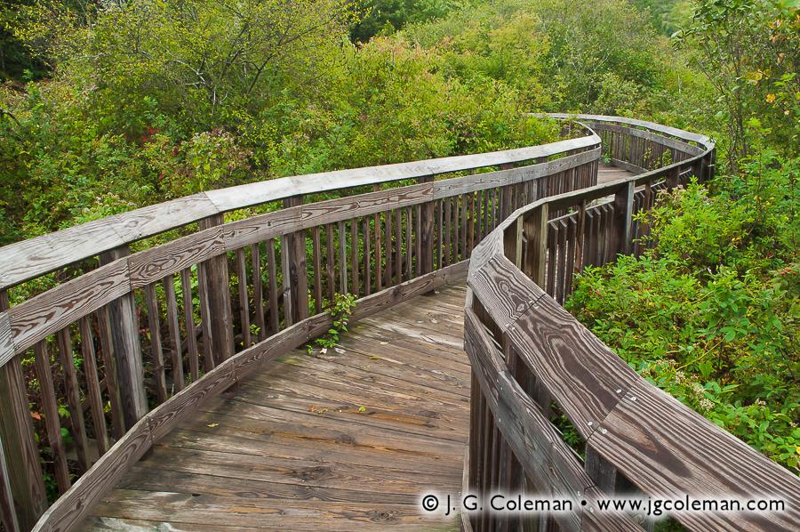&#8220Winding Boardwalk&#8221, Chatfield Hollow State Park, Killingworth, Connecticut