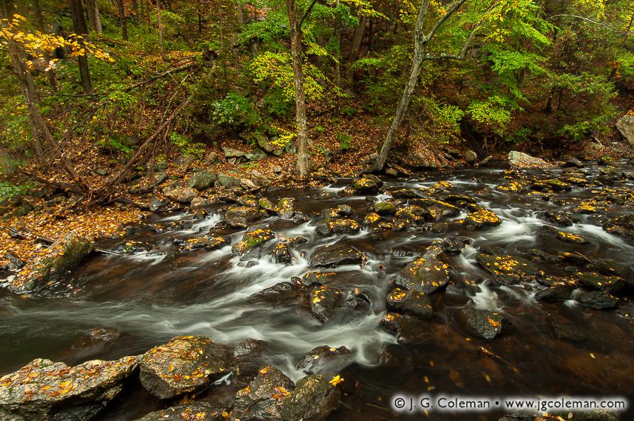 &#8220Splintering the Waters&#8221, Roaring Brook, Cotton Hollow Preserve, Glastonbury, Connecticut