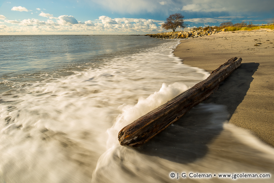 &#8220Driftwood Surge&#8221, Long Island Sound at Harkness Memorial State Park, Waterford, Connecticut