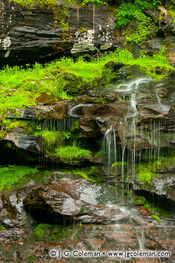 &#8220Spirits Among the Mosses&#8221, Plattekill Falls, Indian Head Wilderness, Hunter, New York