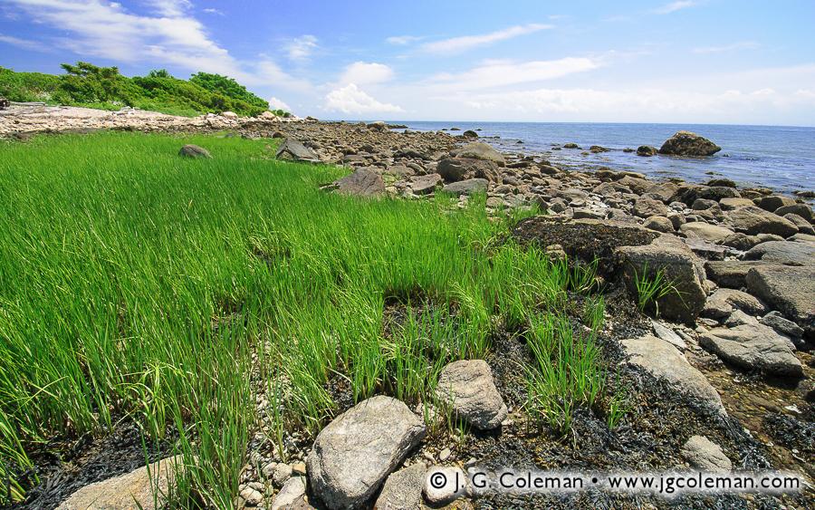 &#8220Western Shores of Menunketesuck&#8221, Menunketesuck Island, McKinney National Wildlife Refuge, Westbrook, Connecticut