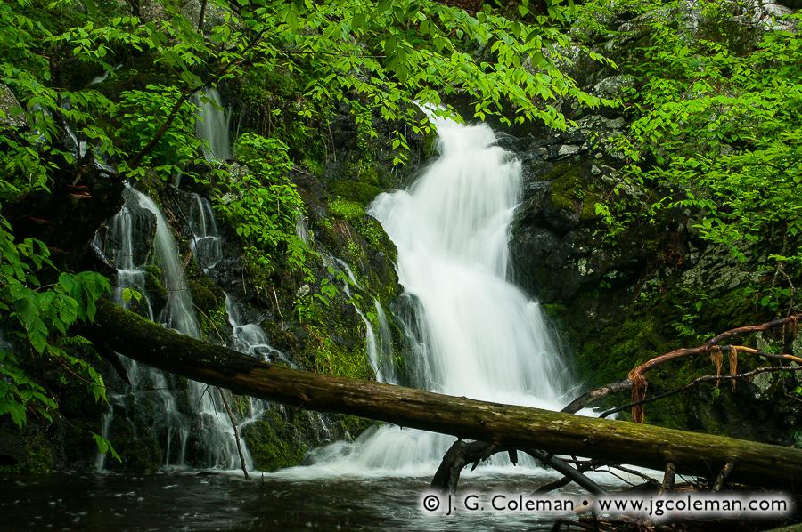 &#8220Hidden Creek&#8221, Havemeyer Falls, Mianus River Gorge Preserve, Bedford, New York