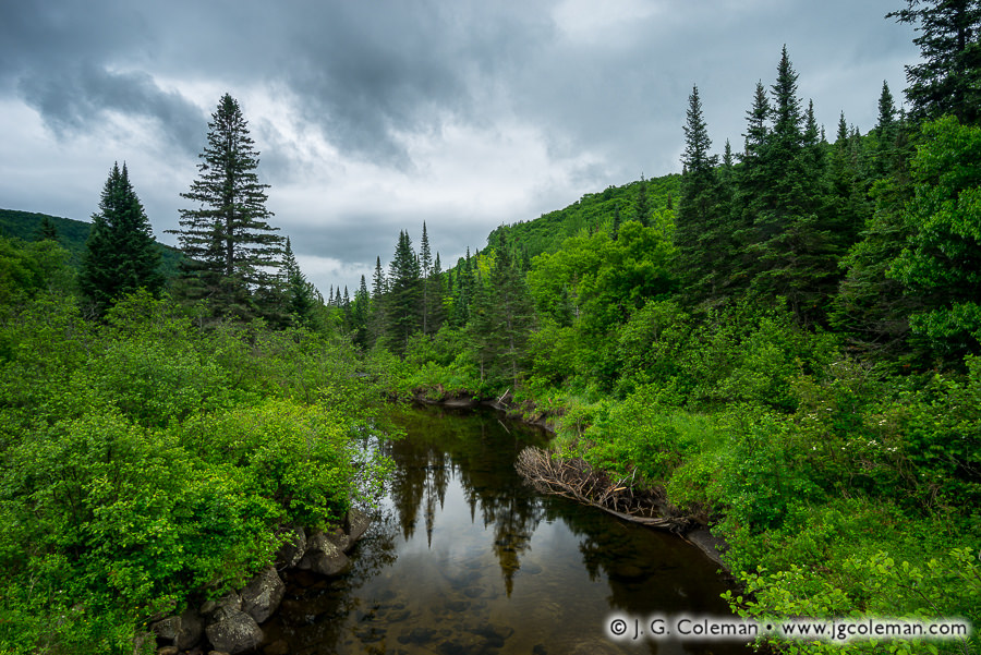 &#8220Salvelinus Sanctuary&#8221, Pherrins River, Morgan, Vermont