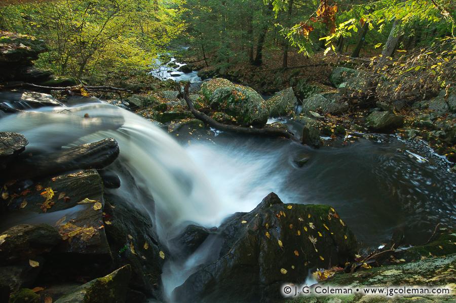 Roaring Brook Nature Center 03