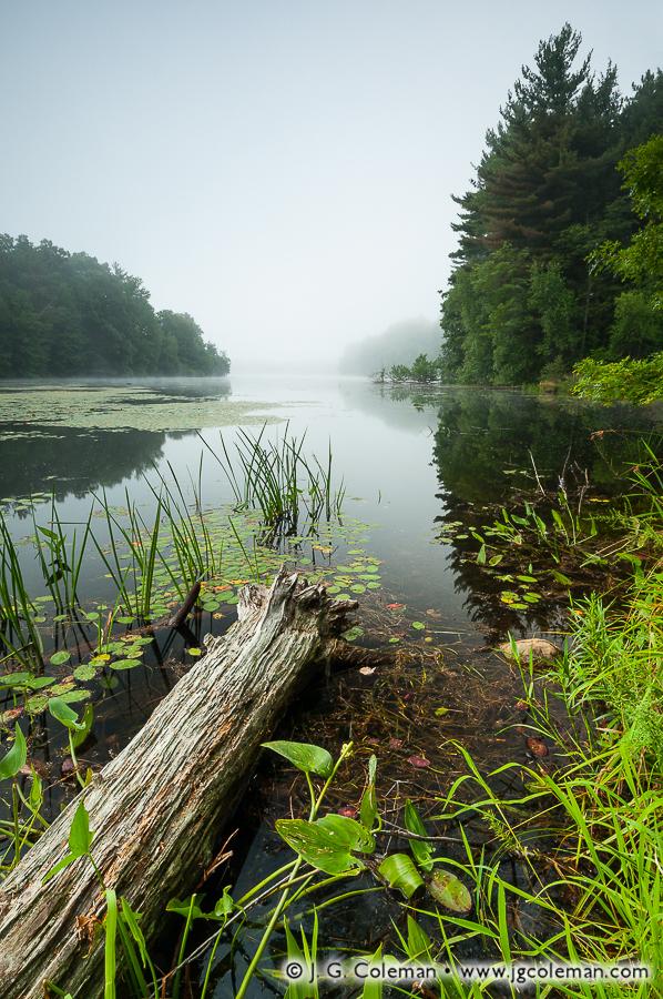 &#8220Woodtick Mist&#8221, Scovill Reservoir, Wolcott, Connecticut