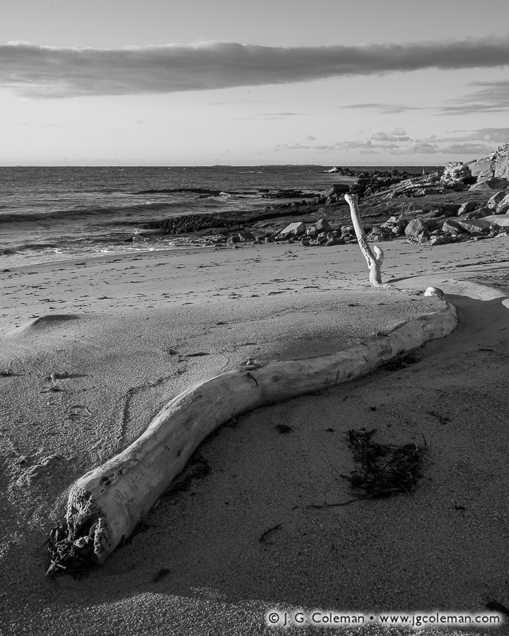 &#8220Sand Serpent&#8221, Long Island Sound, Seaside State Park, Waterford, Connecticut