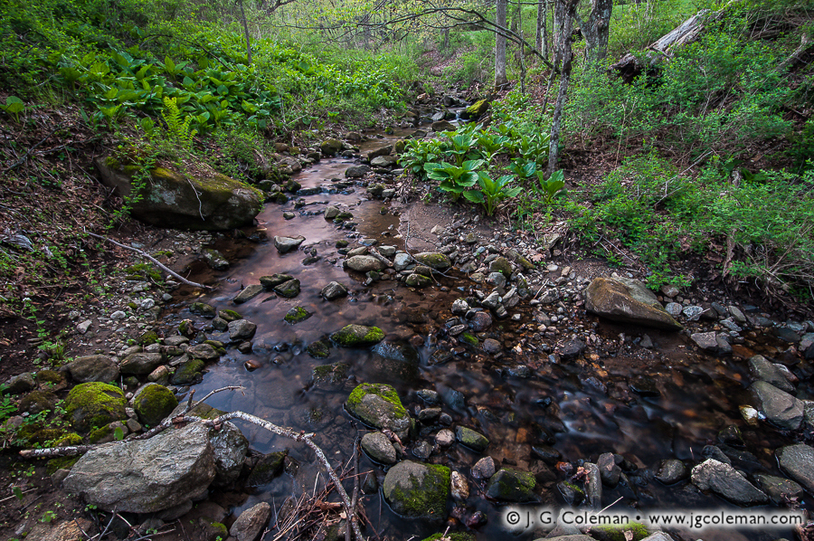 &#8220Spring Twilight on Jack's Brook&#8221, Jack's Brook, Brian E. Tierney Preserve, Roxbury, Connecticut