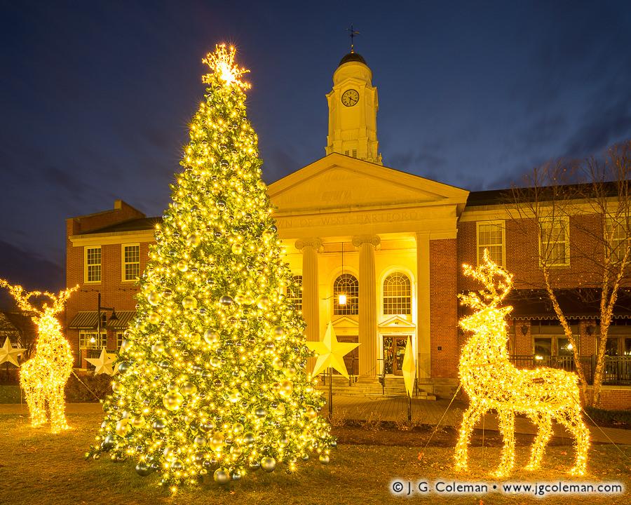 Christmas Lights at West Hartford, 2017 (Christmas Tree at West Hartford Town Hall, West Hartford, Connecticut)