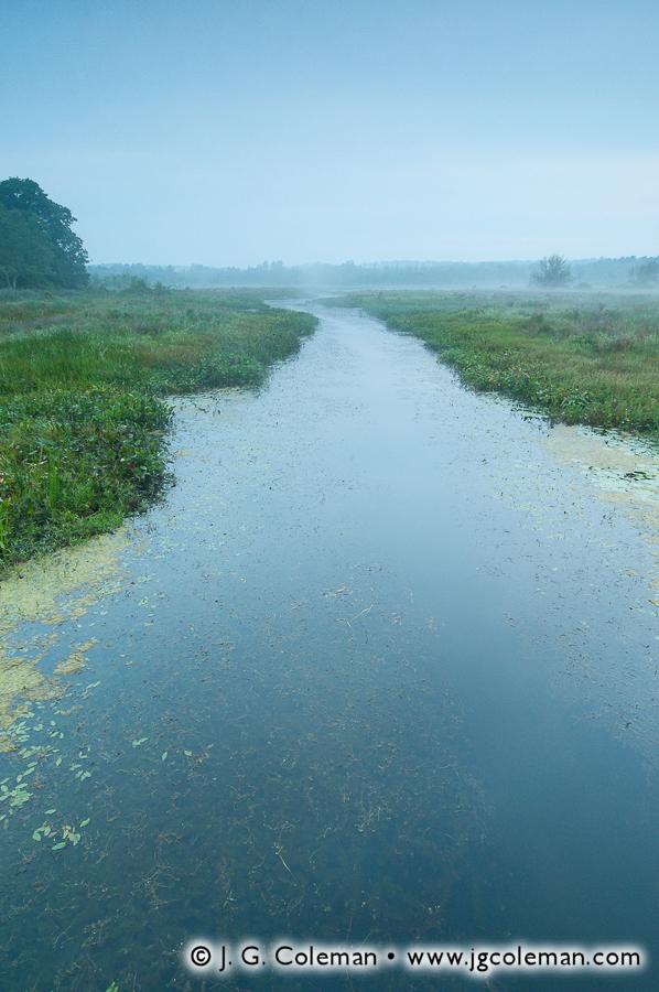 &#8220Bantam River Quietude&#8221, Little River, White Memorial Conservation Center, Litchfield, Connecticut