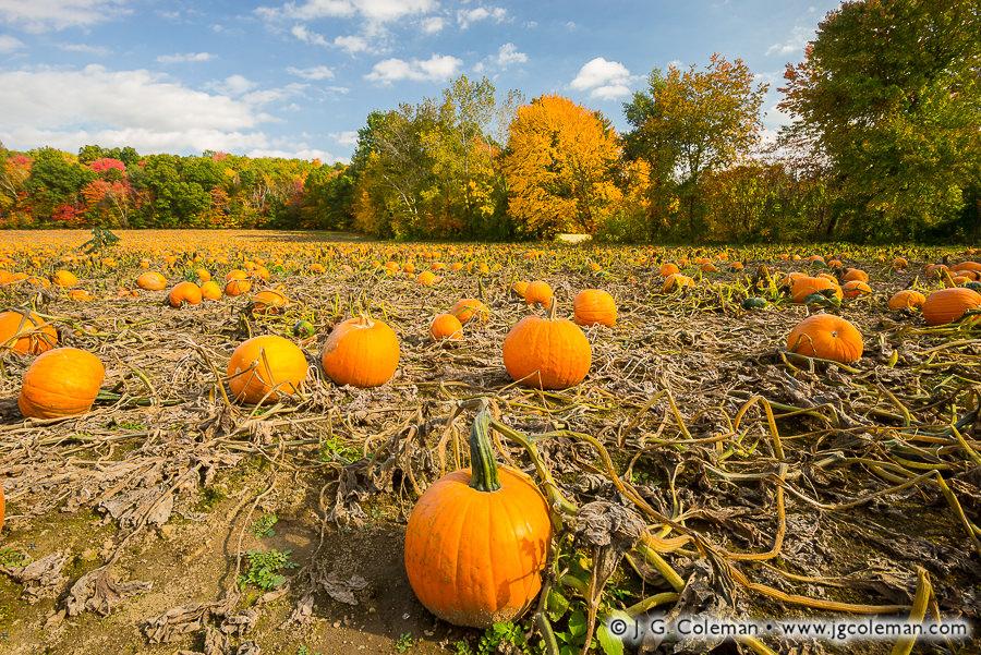 &#8220Yankee Farmlands № 88&#8221, Enfield, Connecticut