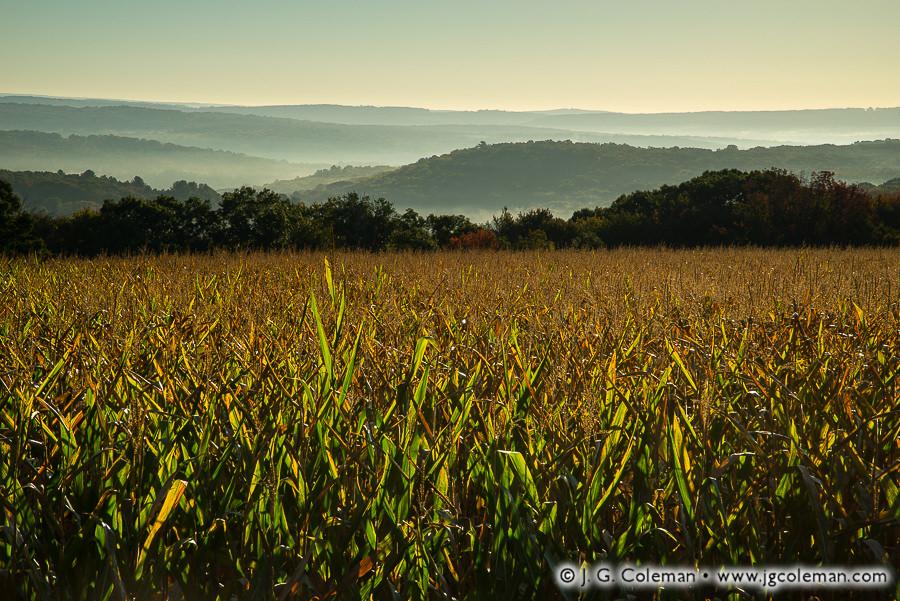 &#8220Yankee Farmlands № 86&#8221, Roxbury, Connecticut