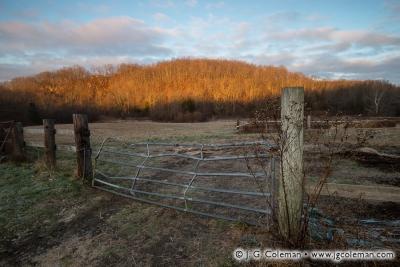 Yankee Farmlands № 16