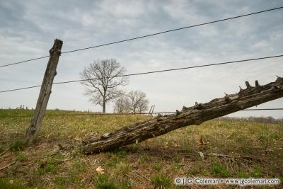 Yankee Farmlands № 63