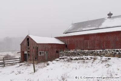 Yankee Farmlands № 19
