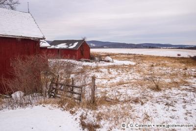 Yankee Farmlands № 22