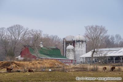 Yankee Farmlands № 27