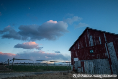 Yankee Farmlands № 52