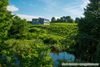 Yankee Farmlands № 75