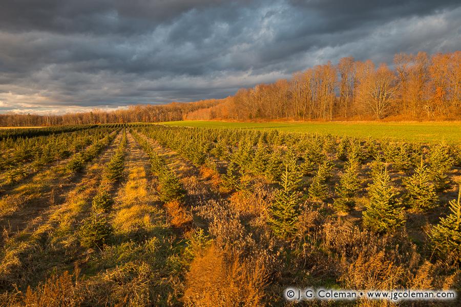 &#8220Yankee Farmlands № 45&#8221, Ellington, Connecticut