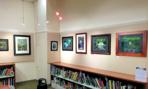 Artwork from the Waterfalls of Connecticut Show hanging at Noah Webster Library