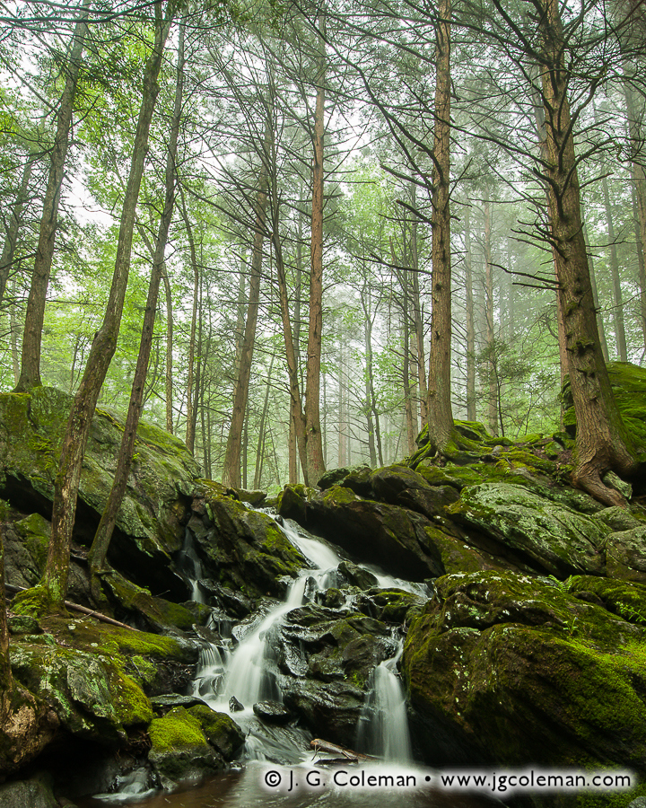 buttermilk-falls-preserve-005.jpg