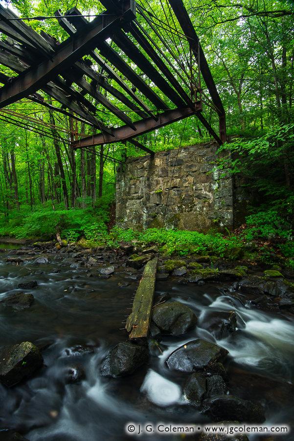 mattatuck-state-forest-004.jpg