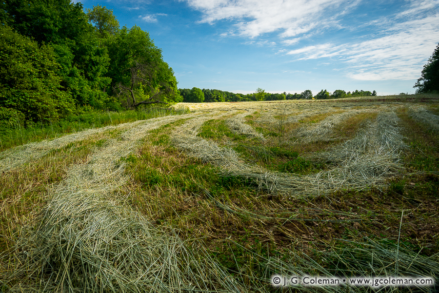 yankee-farmlands-no-69-bloomfield-ct.jpg